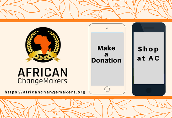 Strategic Funding Avenues for African ChangeMakers to Expand its Programs and Impact More Life's Across Africa.