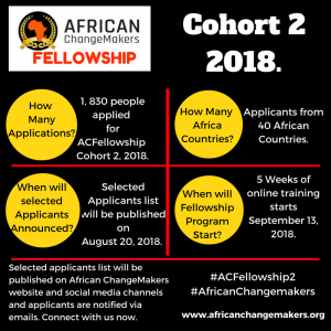 Selected Applicants for African ChangeMakers Fellowship Cohort 2, 2018.
